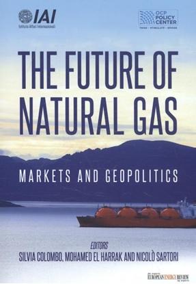Afbeeldingen van The future of natural gas