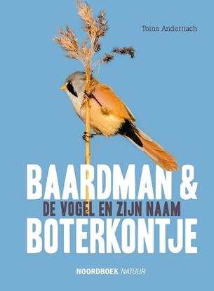 Afbeeldingen van Baardman en boterkontje